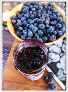 The Busy Farmer Collection Blueberry Jam